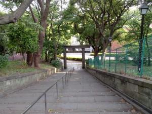 Vers le lac en bas du parc d'Ueno