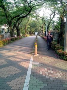 Une rue traversant le cimetière de part en part