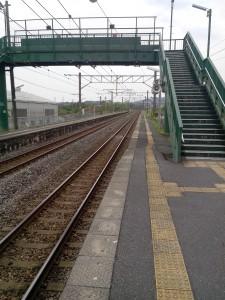 La première station après Shin-Tosu, c'est la brousse...