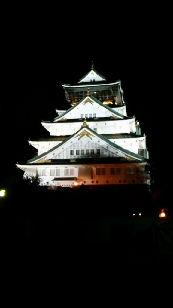 Le château de nuit, pas très bien restitué pas cette photo...