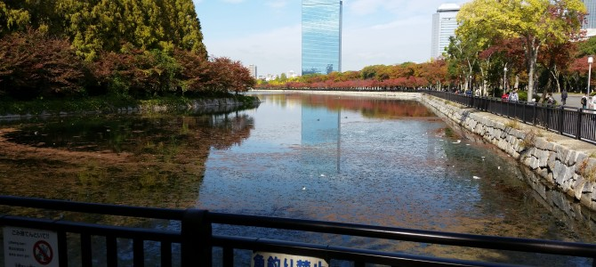 Ōsaka, toujours les Morning Musume。'14 (16 novembre)